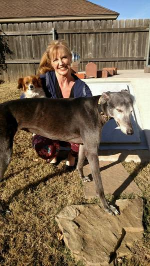 Safe Greyhound in Oklahoma City, OK US