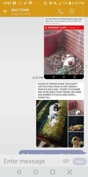 Lost Jack Russell Terrier in Fort Gibson, OK US