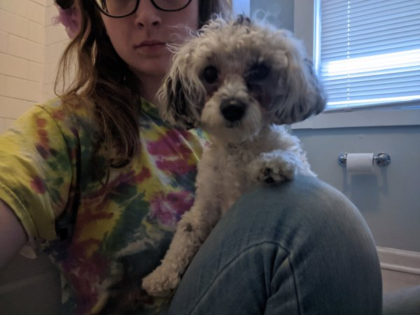 Found Dog in Dundalk, MD US