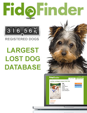 Fido Finder flyer